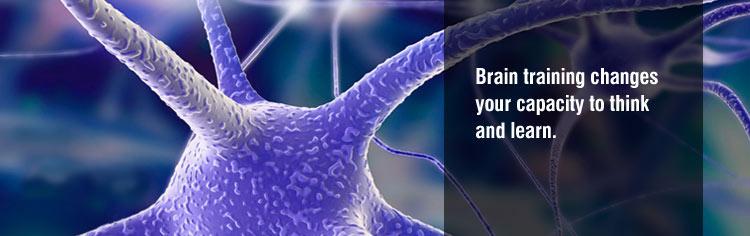 brain exercise training