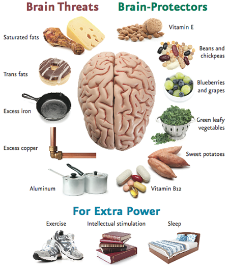 brain health protect