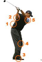 golf_injury_map_all